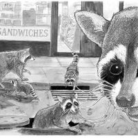 Raccoons night out on the town