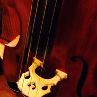 view of double bass