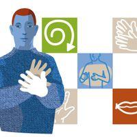 SUVI, suomalainen viittomakielen sanakirja, kuvitus verkkosivulle (2013), digitaalinen tiedosto