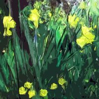#11 Daffodils, Wales (square)