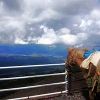 The most pensive horse in the world?! Mt Fuji, Japan.