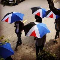 red peak + blunt umbrellas