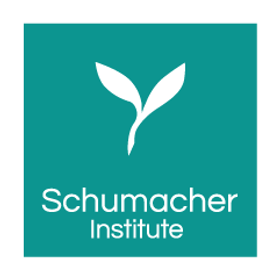 logo of schumacher institute of sustainable systems