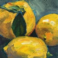 February 17th, 2017 - Meyer lemons