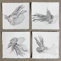 "Facet - Sage  (Four graphite drawings on paper, 5""x5"" each. Framed"