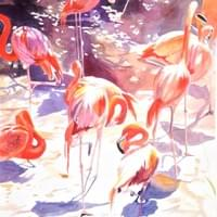 Fabulous Flamingos 30x22