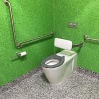 Accessible Unisex Right Hand RH Toilet with grab rails and back rest