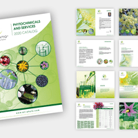 CREATION ET RÉALISATION DU CATALOGUE LPPAM - 70 pages