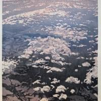 River Delta At 30,000 Feet