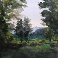 Mountains and Trees, 2019