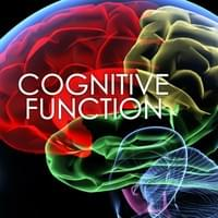 COGNITIVE FUNCTION - Our brains have the ability to process thoughts, refer to memory, learn new activities like speech and reading comprehension. Cognitive development occurs in childhood and starts as soon as conception. As we grow, interact, and age factors begin to inhibit our ability to think clearly, remember facts, and conversations. Losing our cognitive function is a frustrating process at any age. American Center for Natural Medicine will focus on increasing your brain's nutrition, enzymes, and building blocks to build new cells. We will focusing on decreasing inflammation, and toxins while improving antioxidants, which are key aspects to improving your brains ability to function.
