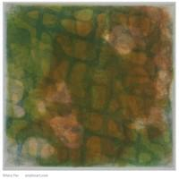 "Green Salmon Ghost Net | 6 "" x  5.875"" 