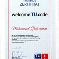 Working as tutor at TUWien