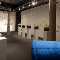 Milwaukee: Spaces To Places, installation - Mary Nohl Fellows exhibition, 2012.