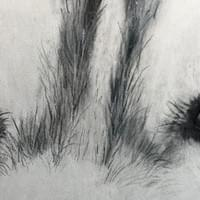 EYES on Colored pencil 4 x 8