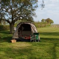 Pre-pitched tents available