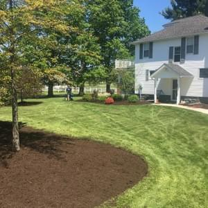 Lawn Care Cutting and Mulching