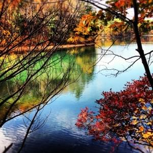 Walden in the fall