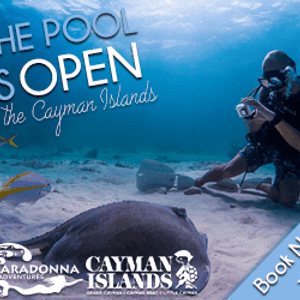 Cayman Islands Department of Tourism Banner Ad