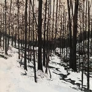 Woods in Winter, Nelsonville, NY