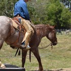 Tom Curtin Horsemanship Clinic (March 2014)