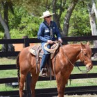Tom Curtin Quality Horsemanship