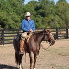 Tom Curtin Horsemanship Clinic