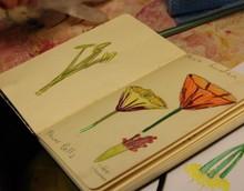 2013 Music Garden Flower Bells sketchbook