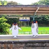 紀の国トレイナート2014白浜駅