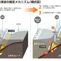 Mechanism of the 2011 earthquake in Japan