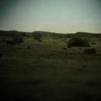 Crawl Space Landscape