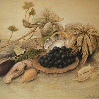 Pastel & Kleurpotlood - Renaat Veris