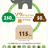 インフォグラフィック「ゾウのふんから紙ができる!」