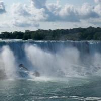 Nature leaf - Niagara Falls, Canada - 2009