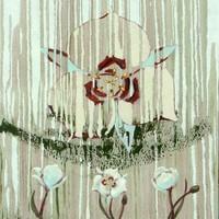Four Sego Lilies