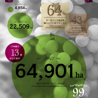 インフォグラフィック「加速する有機ワイン生産」