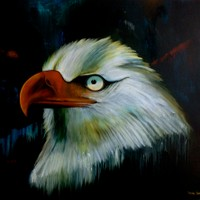 Mirada de Aguila II