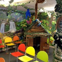 Jungle Themed waiting room at KidsFirst Dental in ABQ