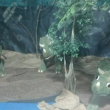 Natural Habitats for Triceratops