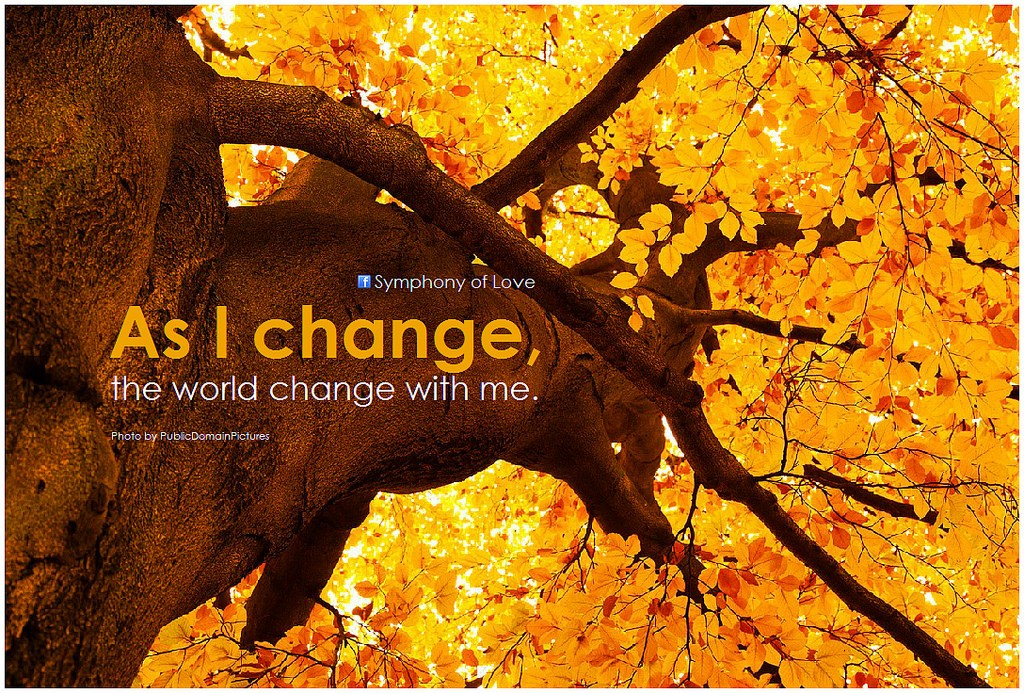 As I change the world changes with me, quote, change from within