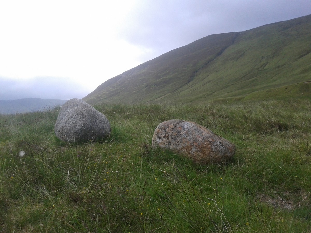 peter martin glen roy stones