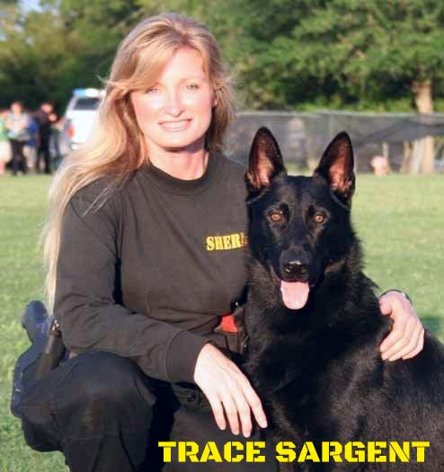 Trace Sargent