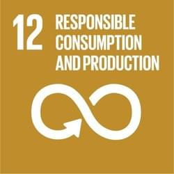 United Nation's Sustainable Development Goals: Responsible Consumption and Production
