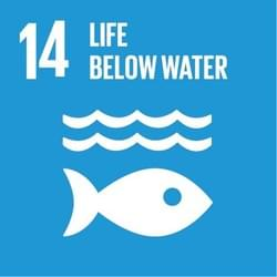 United Nation's Sustainable Development Goals: Life Below Water