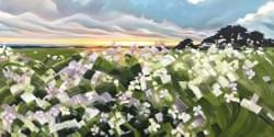 Half Moon Bay Spring Sunset 30x60 oil and wax on linen