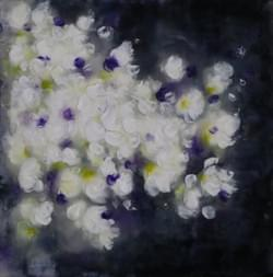 White Petals in Water