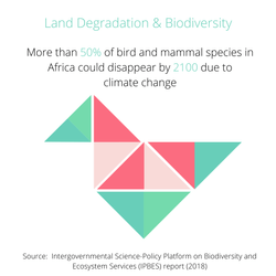 Land Degradation and Biodiversity