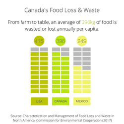 Canada's Food Loss and Waste
