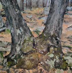 Split Tree (Early Spring), 2020