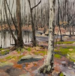 Edge of Pond in Woods, 2020